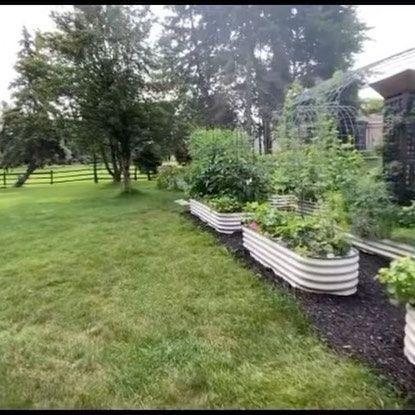 raised planter boxes